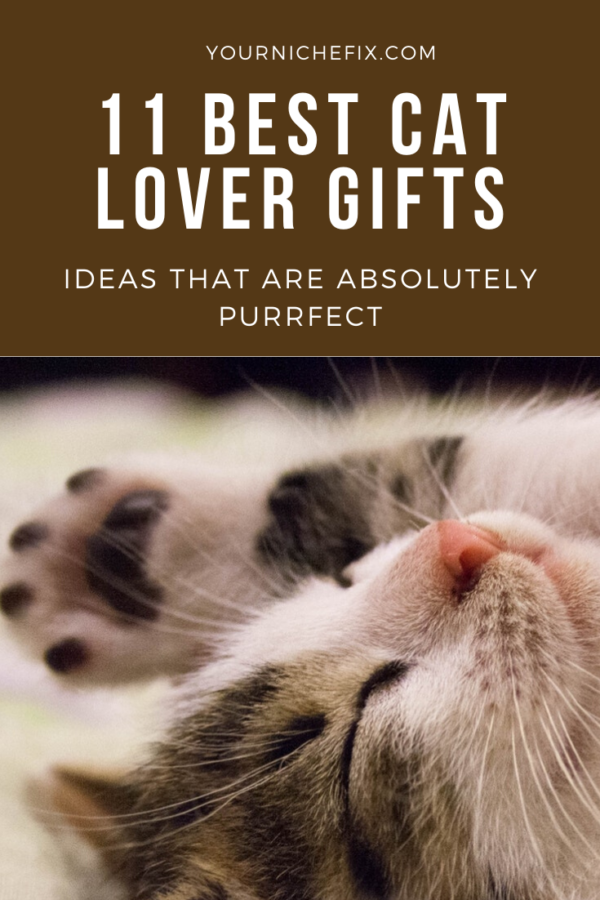 best cat lover gifts ideas